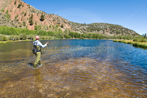 Fly-fishing North Lake, Bishop Creek Canyon